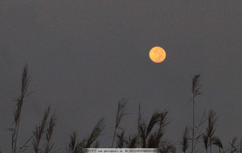 月夜简谱歌谱葫芦丝