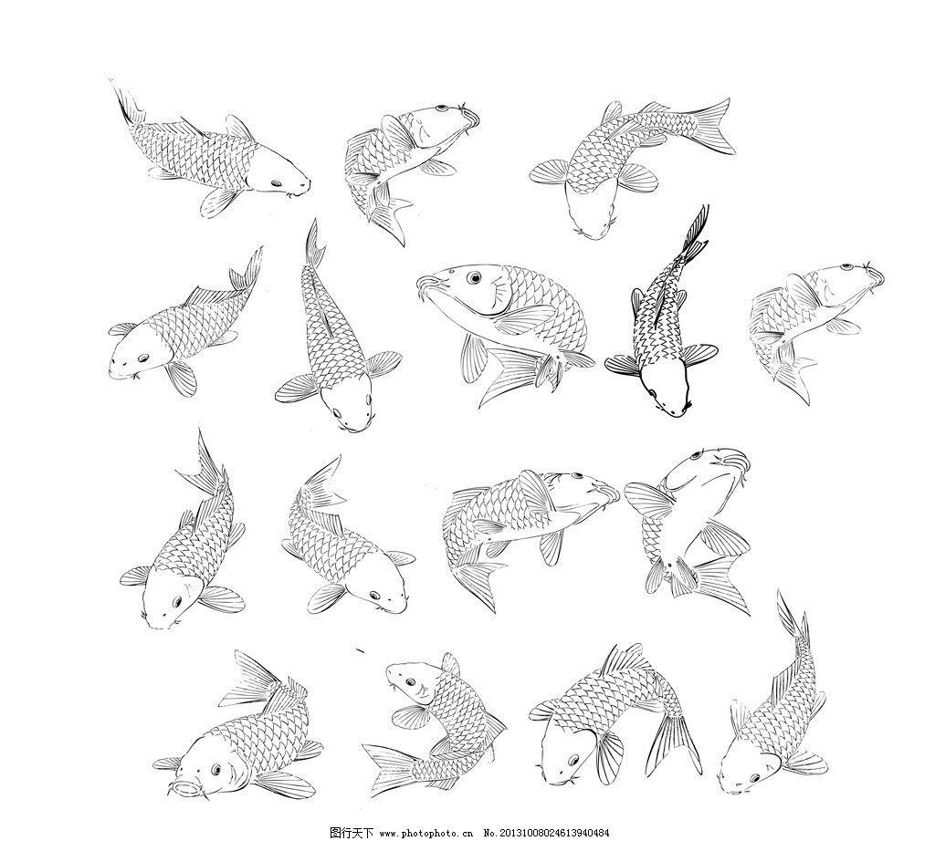鱼工笔线描画-ai线描草图