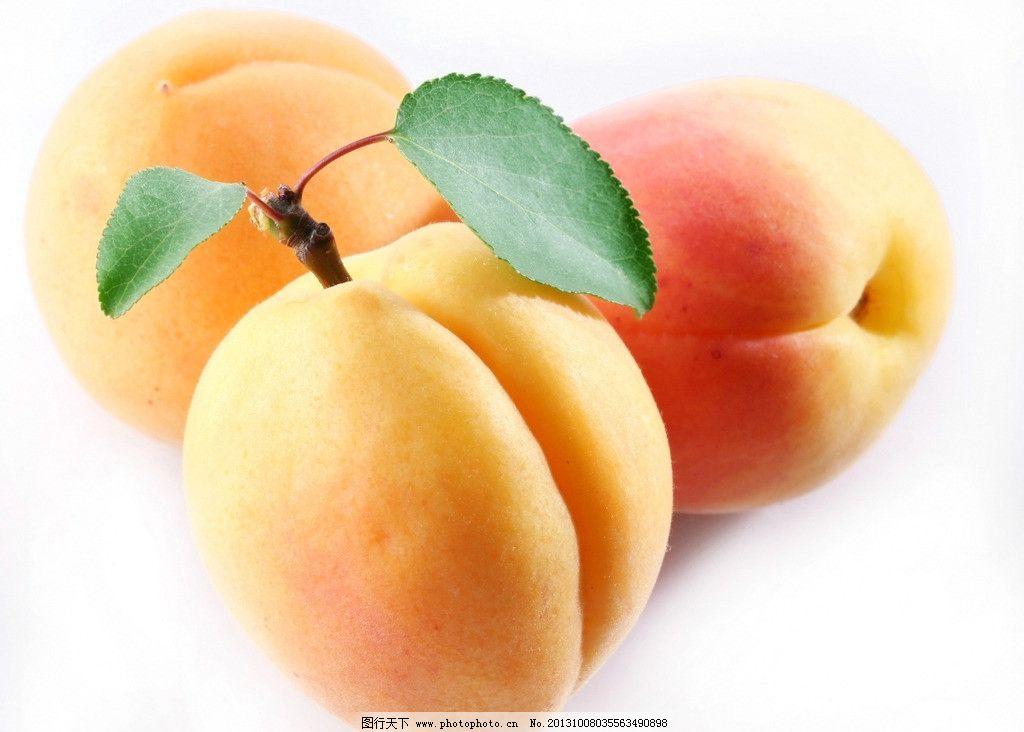 桃子 水果 新鲜水果 鲜果 餐饮美食 生物世界 摄影 300dpi jpg