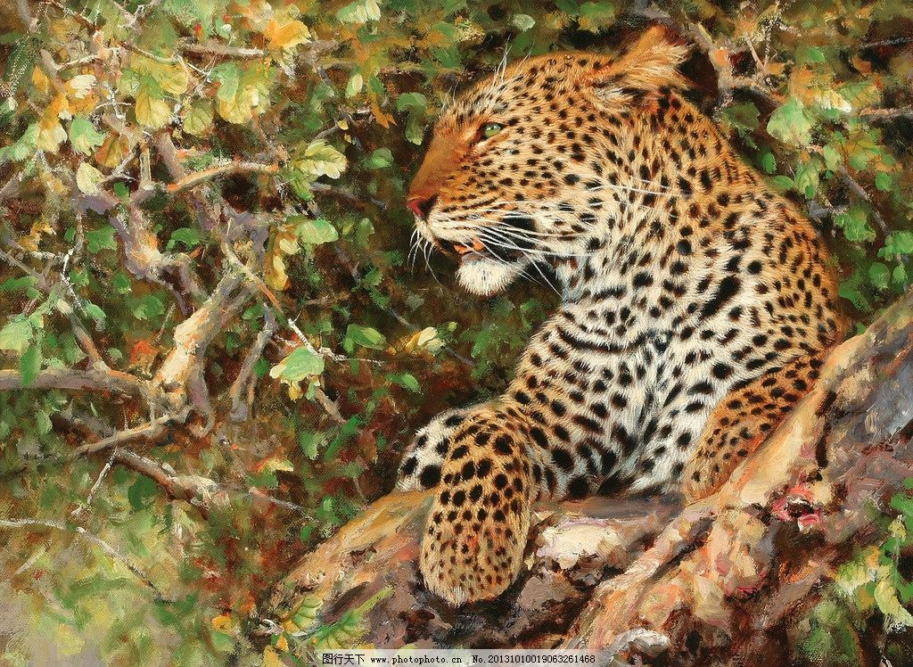 树丛的豹子 美术 油画 动物 豹子 金钱豹 树丛 油画艺术 绘画书法
