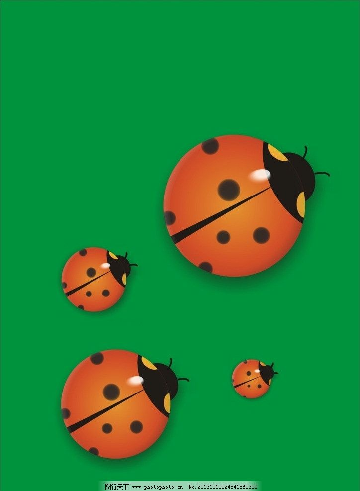 七星瓢虫 动物 虫类 昆虫