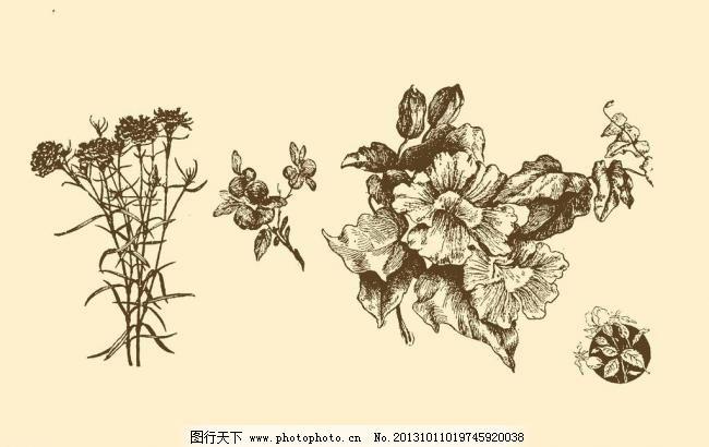图案 插画 插图 版画 简笔画 风光 装饰画 黑板报 植物 钢笔画 其他 p