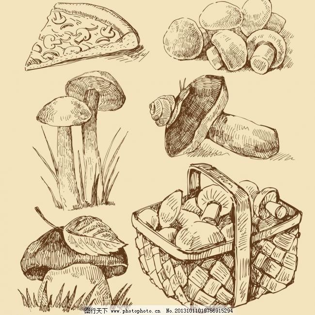 手绘食物模板下载 手绘食物 手绘 蘑菇 线稿 插画 速写 比萨饼 素描