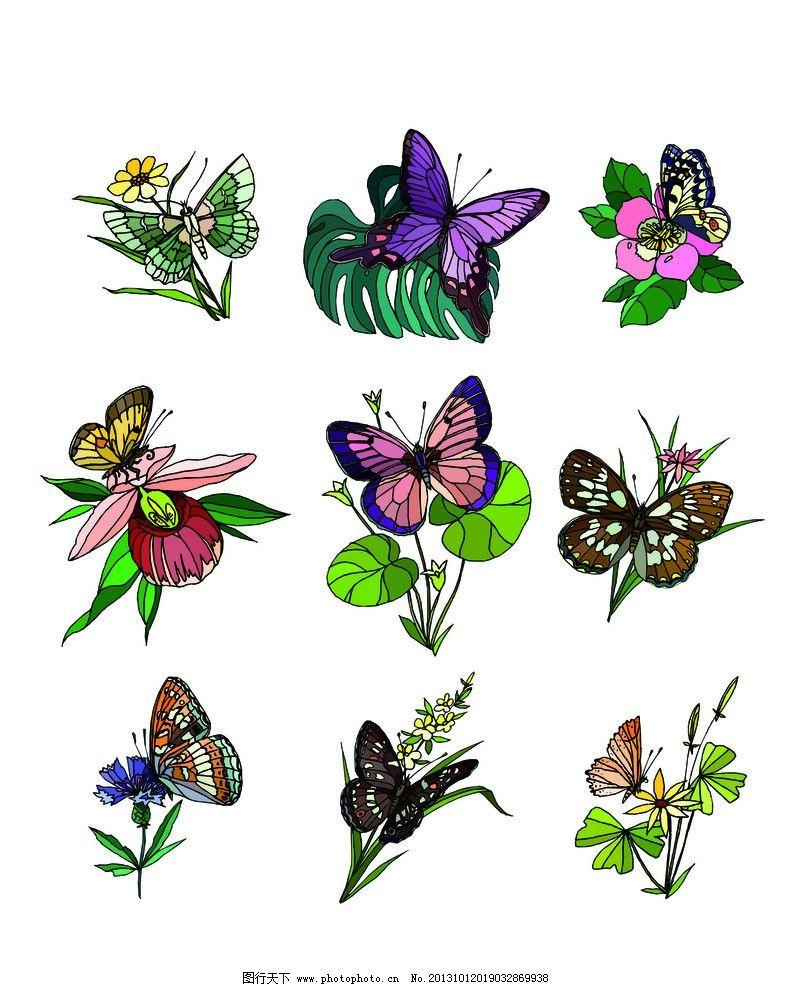 花蝴蝶 自然 花 蝴蝶 绘画 美丽 美术绘画 文化艺术 矢量 cdr