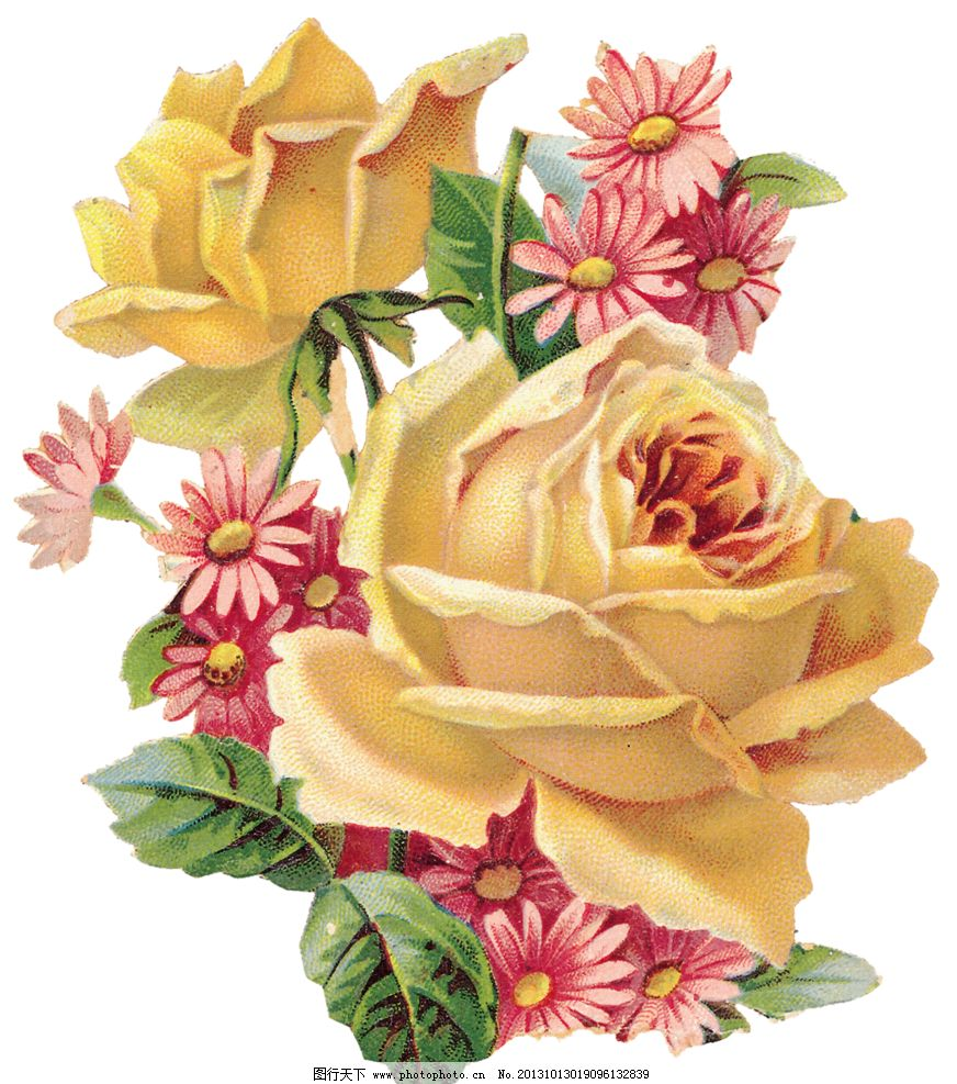 手绘花朵 复古花朵 玫瑰花设计素材 玫瑰花 黄色玫瑰花 静物花卉 月季