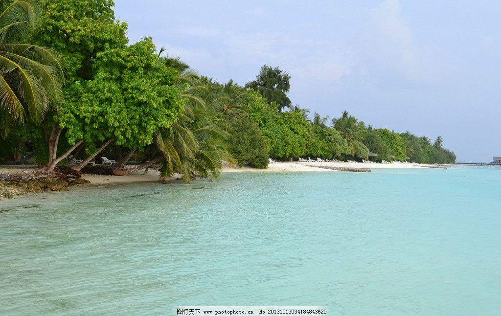 马尔代夫 白金岛 旅行 摄影 海外 大榕树 海边 自然风景 旅游摄影 300