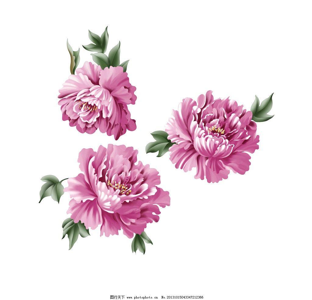 手绘花 手绘花素材下载 手绘花模板下载 电脑手绘花 韩国花 花纹 底纹