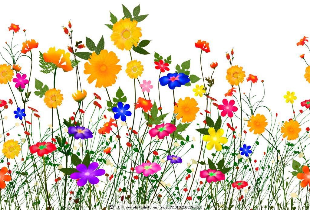 花朵手绘图片_花边花纹_底纹边框_图行天下图库