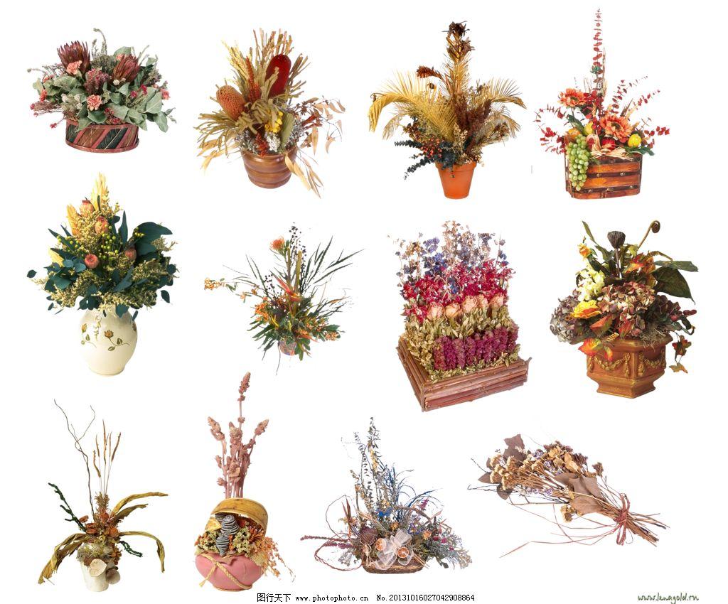 花朵花盆图片