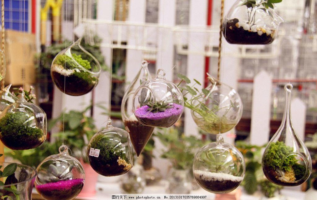 玻璃球绿色植物图片
