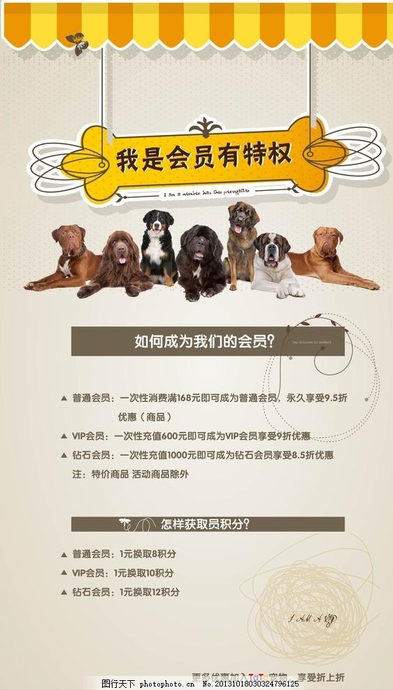 宠物店宣传海报 展板 展架 宠物医院 狗 动物 宠物会员 宣传画