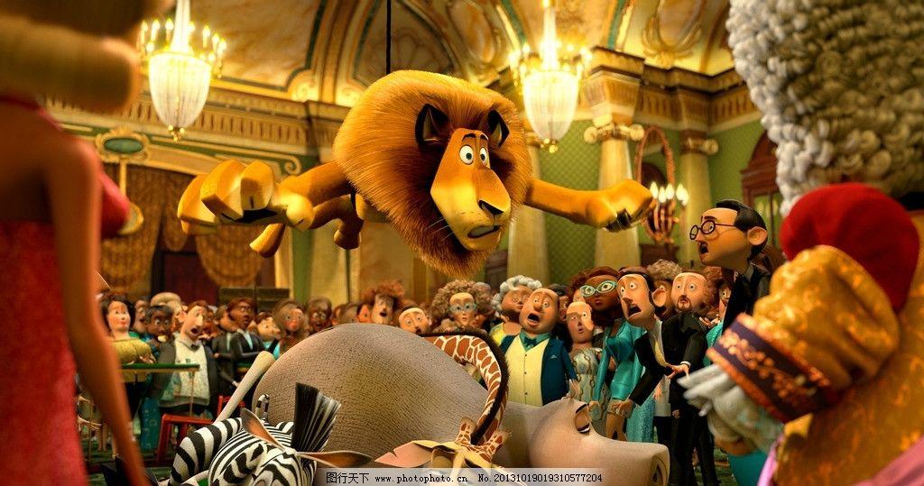 动物总动员 动漫 壁纸 狮子 河马 斑马 影视娱乐 文化艺术