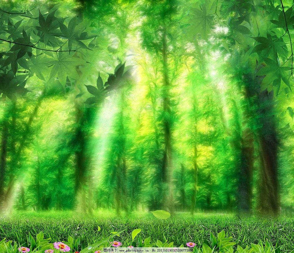 精灵森林 树林图片素材下载
