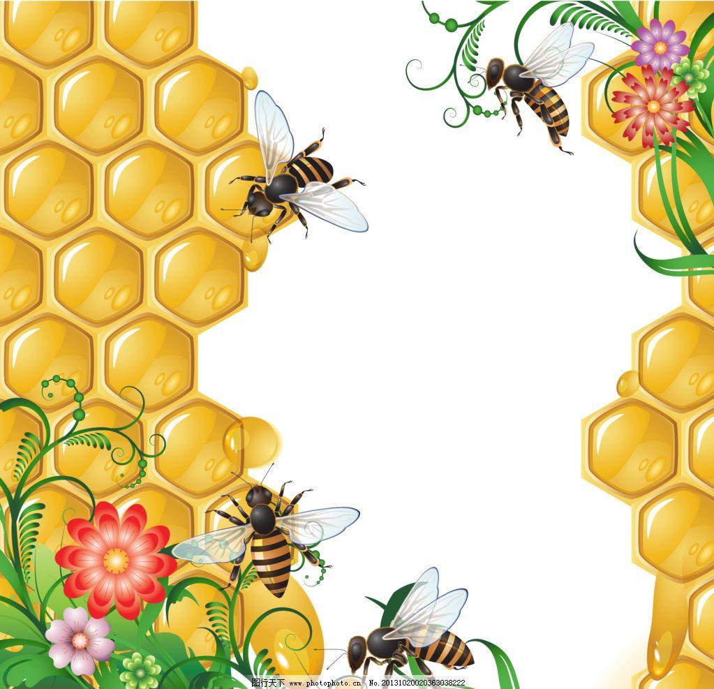 花纹背景 手绘蜂巢 蜜蜂 蜜蜂相框 创意 相框 底纹 蜂巢 边框 底纹