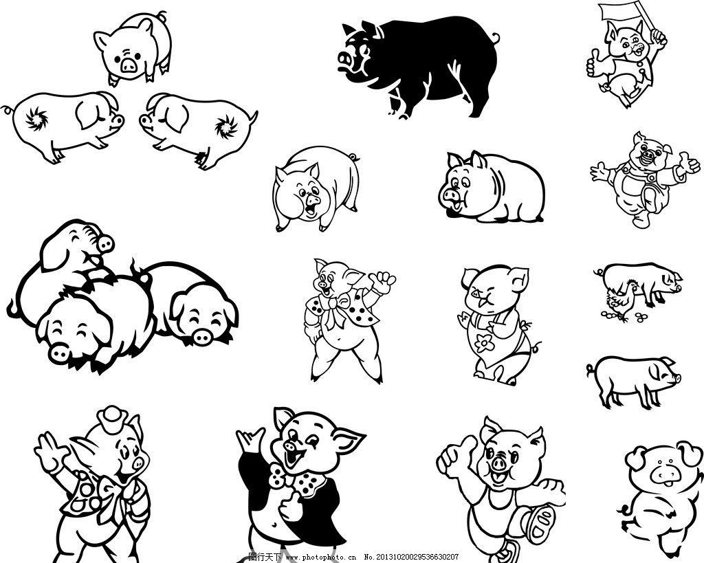 黑白猪 猪 卡通猪 小猪 家禽家畜 生物世界 广告设计 矢量 cdr