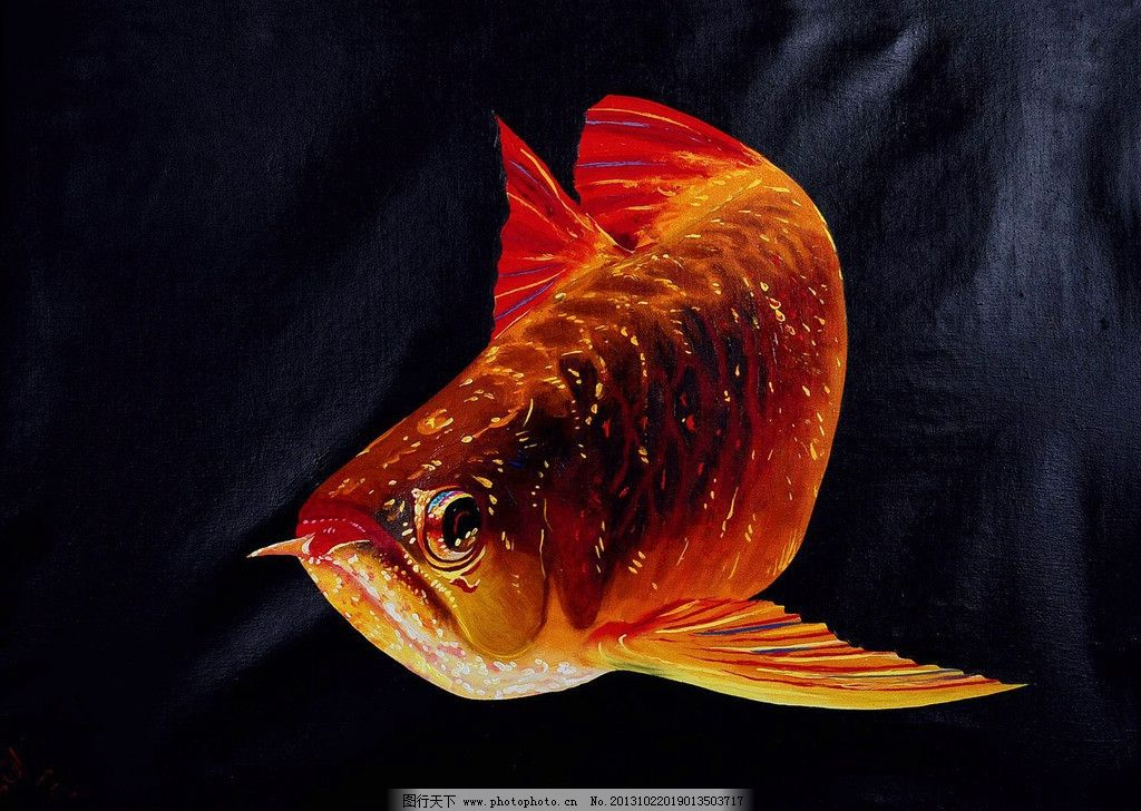 红金鱼图片_绘画书法_文化艺术