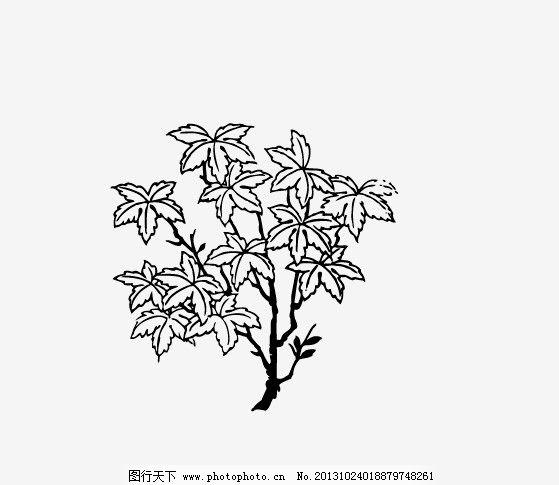 枫树简笔画 步骤