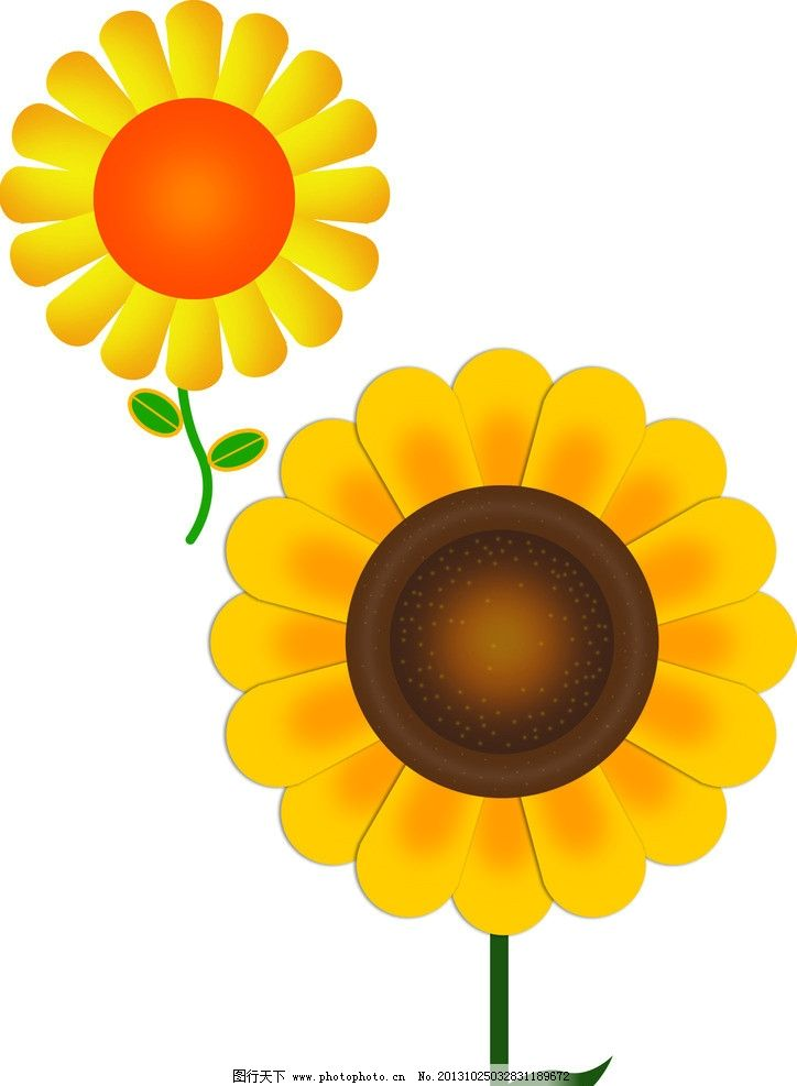 两种向日葵 向日葵 平面 黄色 可爱 卡通 绿叶 卡通花 风景 psd分层