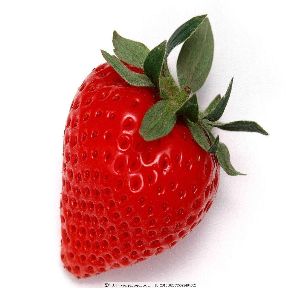 草莓 红色草莓 单个草莓 草莓素材 完整草莓 水果 生物世界 摄影 72dp