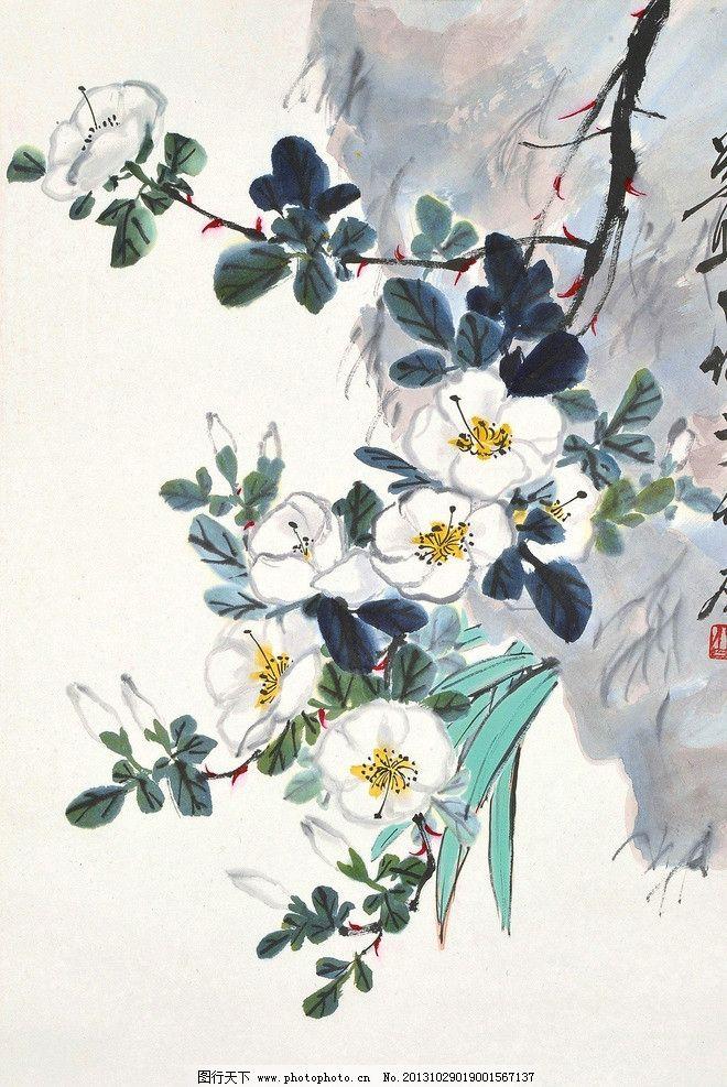 花卉 娄师白 国画 杏花 年年有余 写意 水墨画 花鸟 中国画 绘画书法