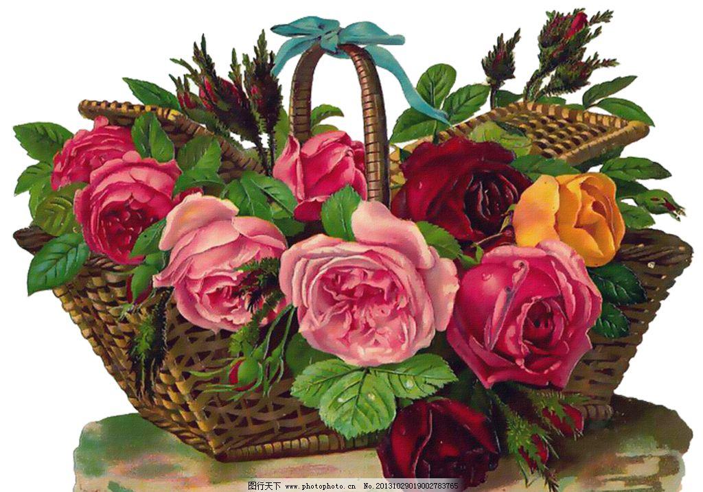 复古玫瑰花 玫瑰花模板下载 手绘玫瑰花 手绘花朵 复古花朵 玫瑰花