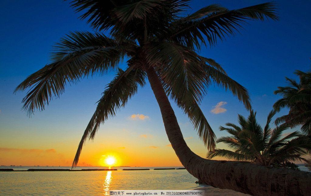 蓝天大海 夕阳 椰子树 大海 海洋 海水 天空 蓝天 自然 大自然 美景