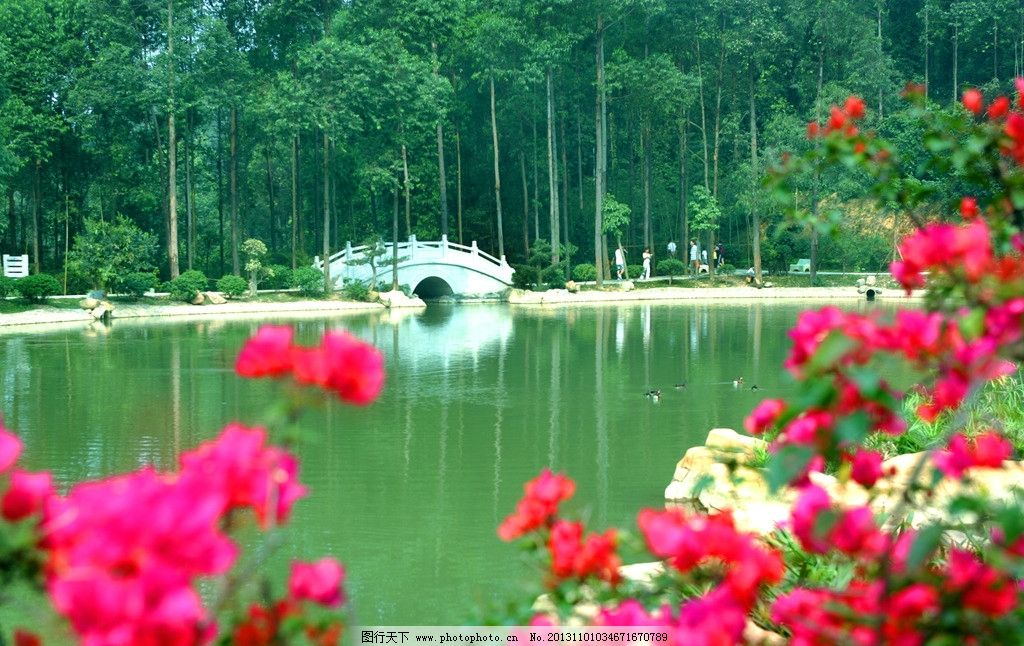 水濂山森林公园图片