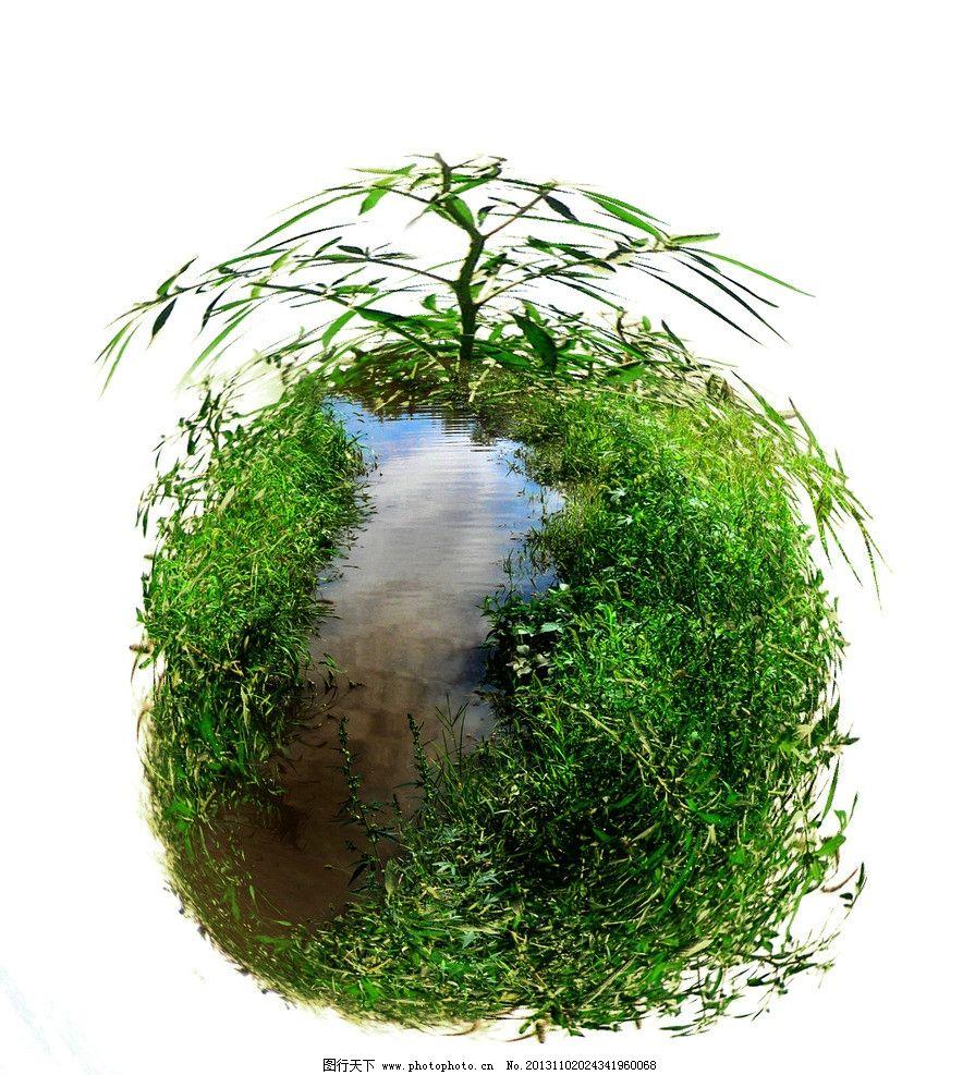 绿岛 野草 小草 倒影 植物