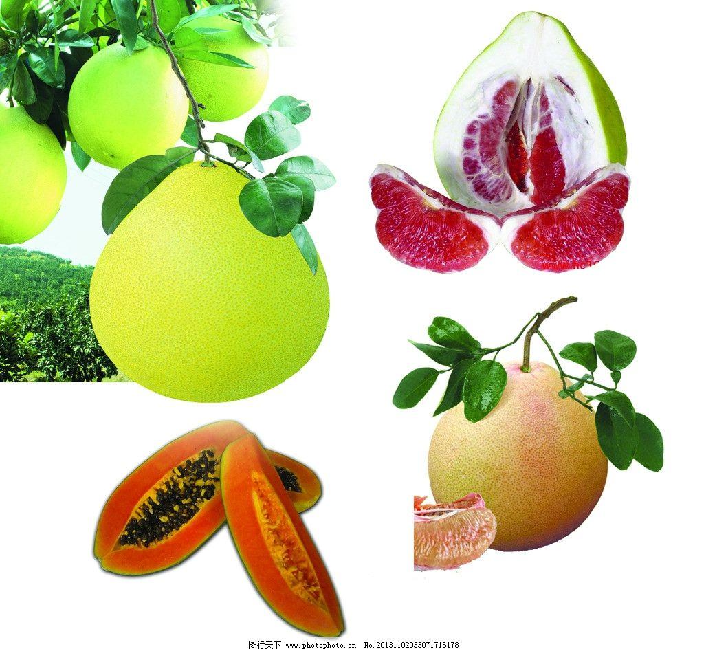 红心蜜柚 木瓜图片