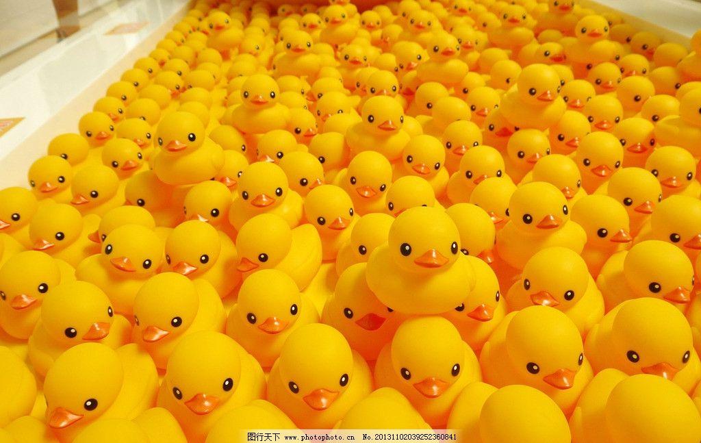 一群小鸭子 可爱 黄色 橡皮鸭 摄影