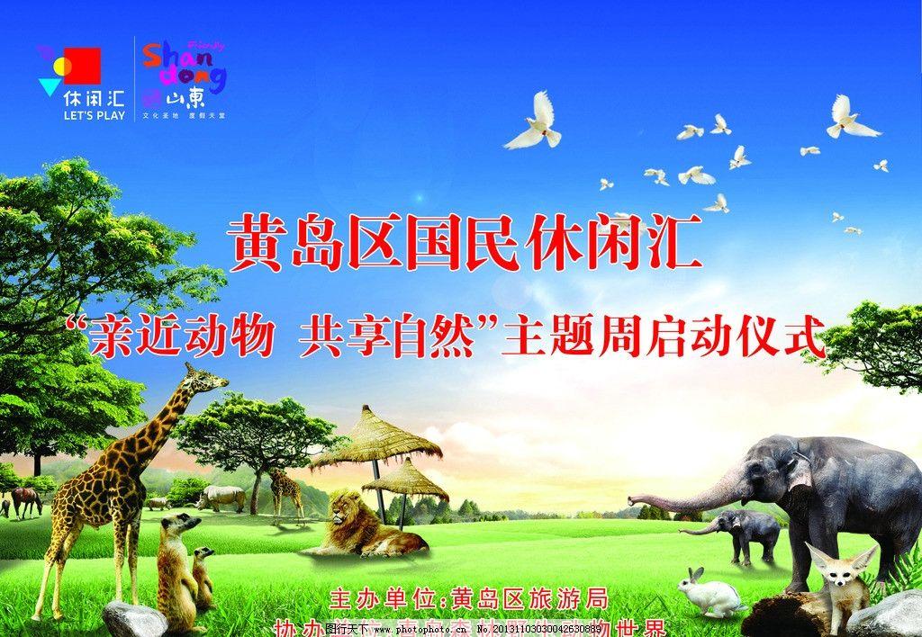 动物园海报 动物 海报 长颈鹿 大象 狮子 白鸽 海报设计 广告设计模板