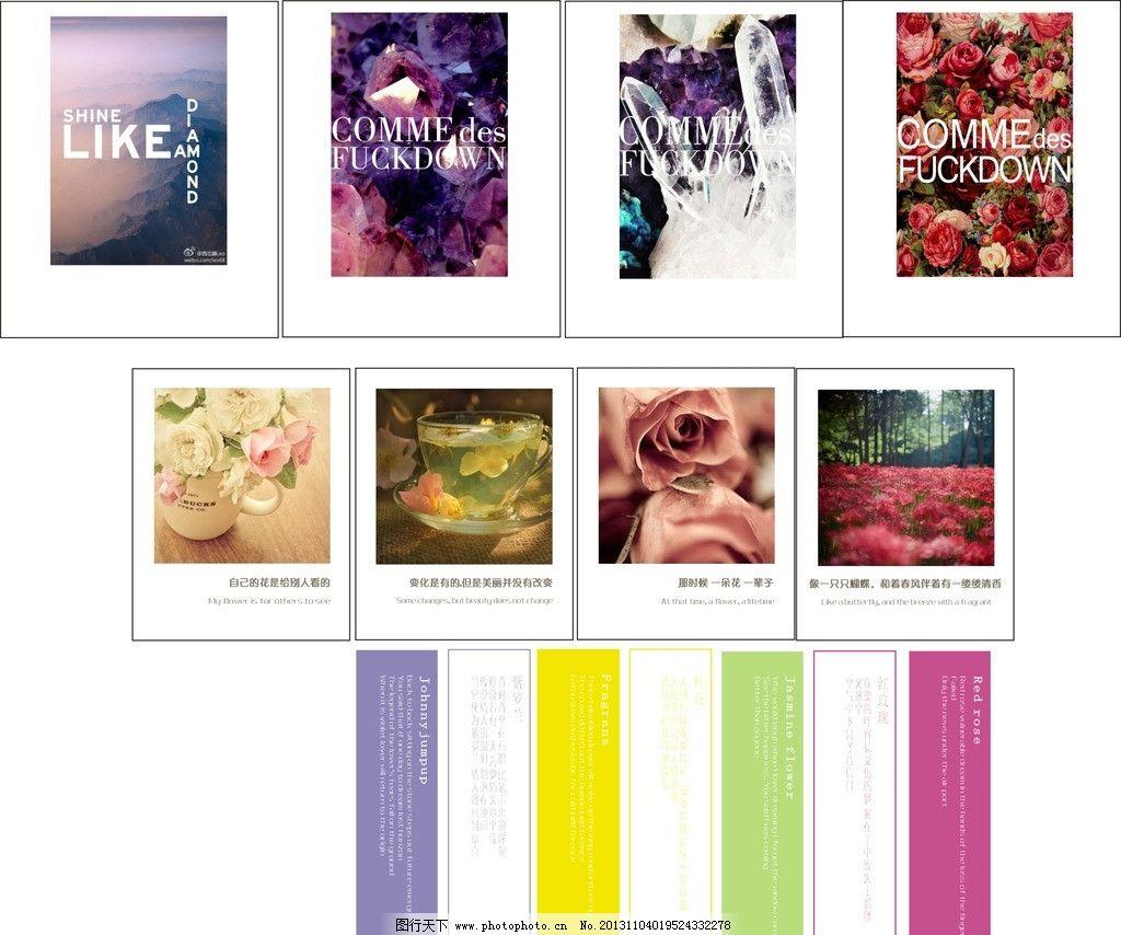 书签 卡片 花朵