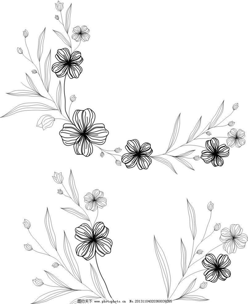 素描画图片大全花朵-兰花素描习作 随意贴图片