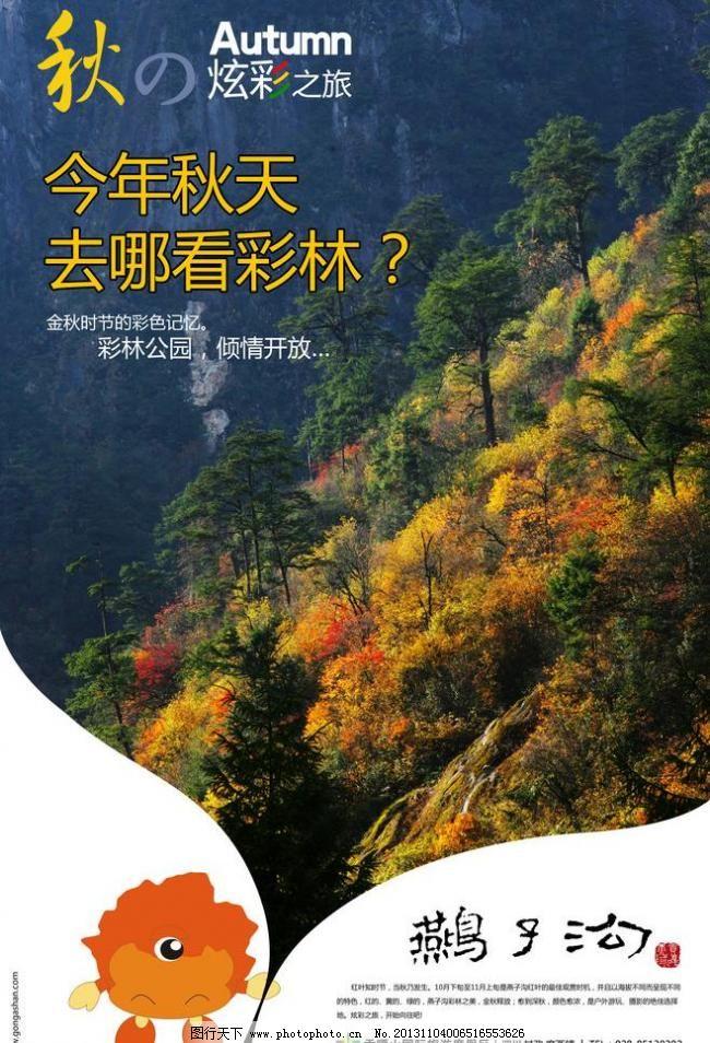 杂志 秋季 秋天 森林 树叶 旅行社 旅游 景区 环保 自然 海报图片