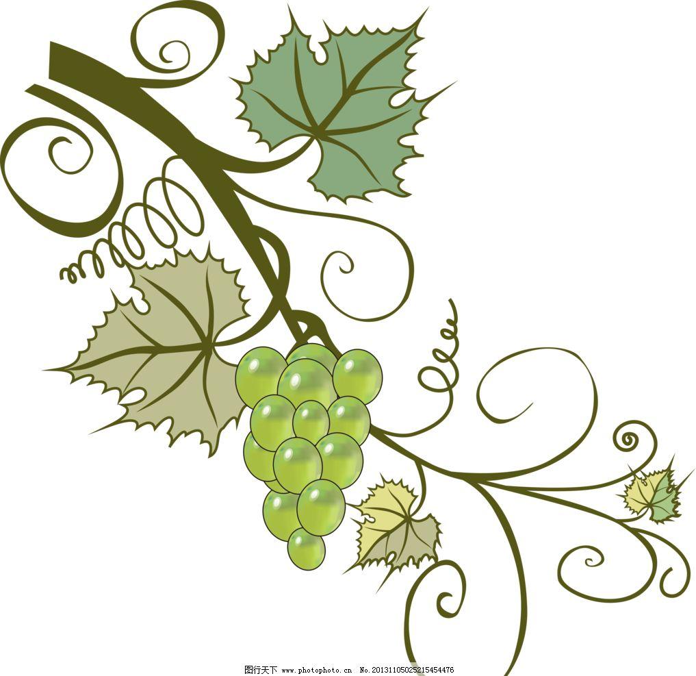 葡萄藤 藤蔓 葡萄 植物 绿色 树木树叶 生物世界 设计 118dpi png