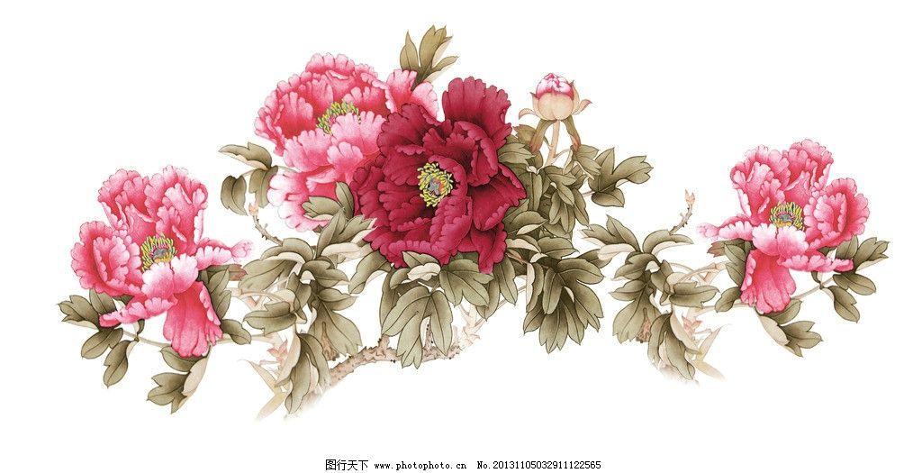 粉红牡丹 牡丹 牡丹花 粉红牡丹花 彩色牡丹花 设计图 背景素材 psd
