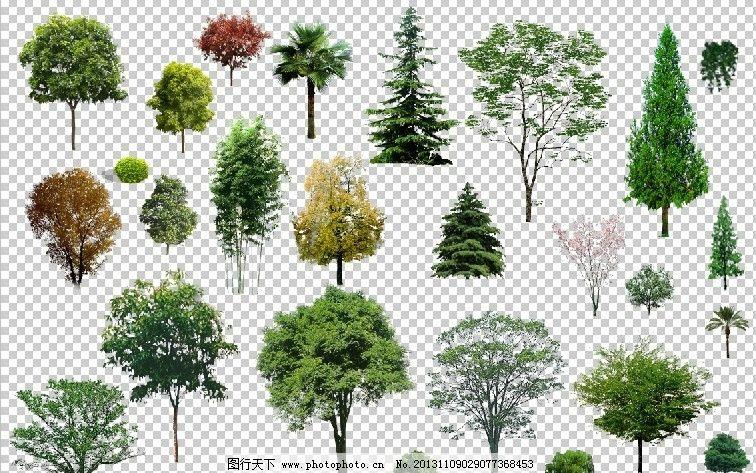 ps鸟瞰树 建筑景观 园林素材设计 树木素材 绿树 其他设计 环境设计