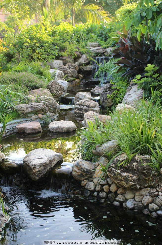 庭院流水景观 石头 植物 花草 自然风景 自然景观 摄影