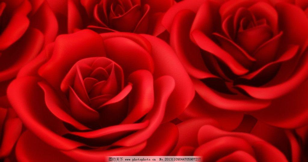 玫瑰视频素材 玫瑰花 鲜花 花朵 花瓣 晚会片头 庆典 动感 动态