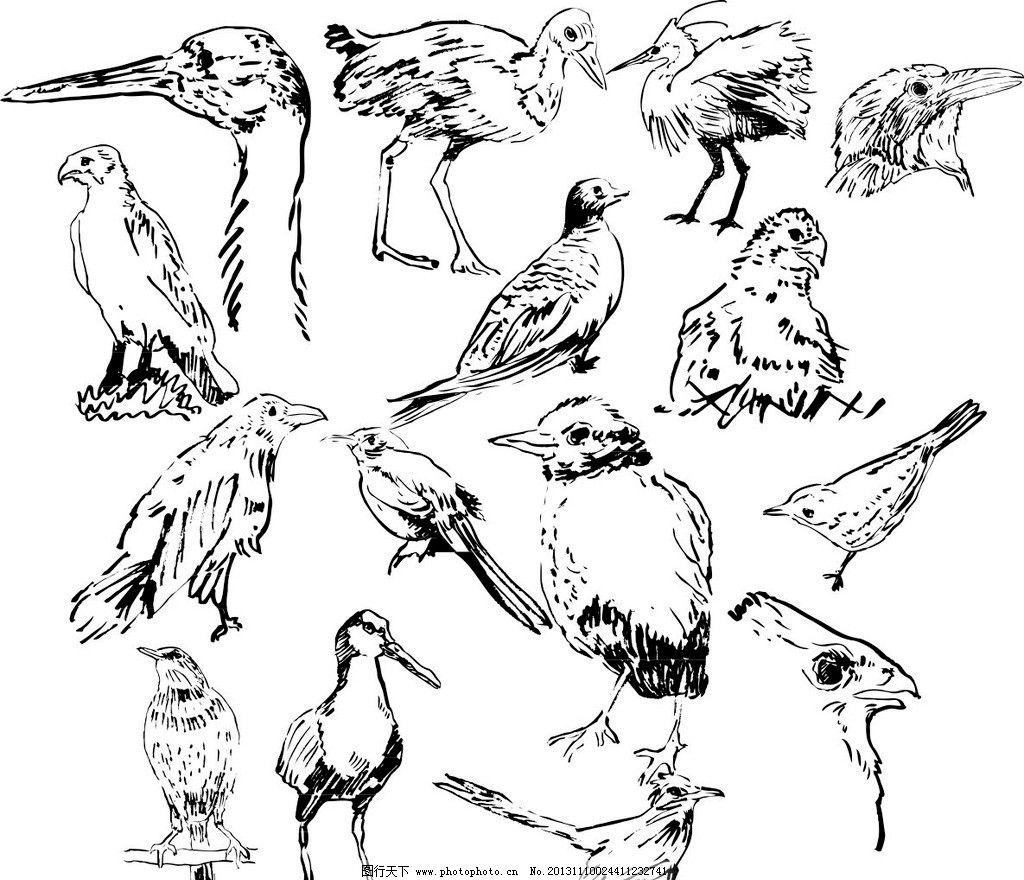 素描动物图片