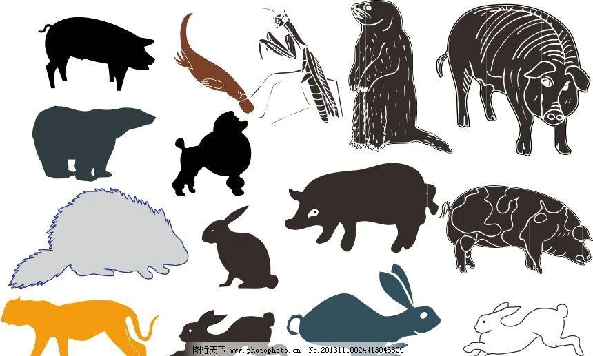 动物世界 兔子 北极熊 野猪 经典动物素描图 素描 动物 陆地动物 生物世图片