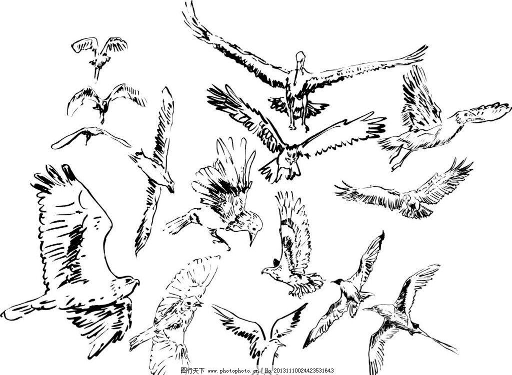 素描动物图片_野生动物