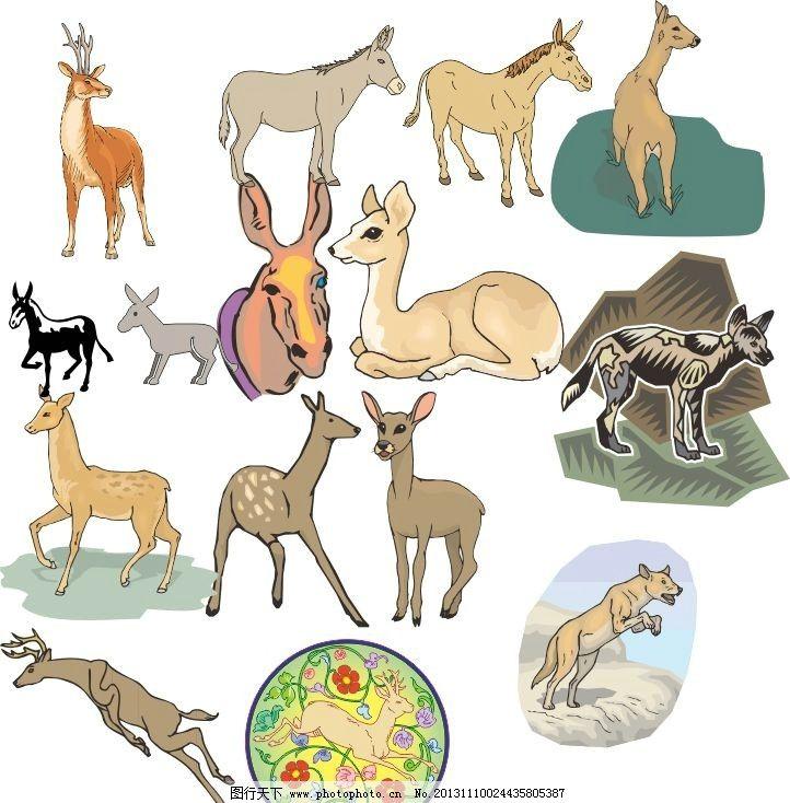 动物世界 鹿 经典动物素描图