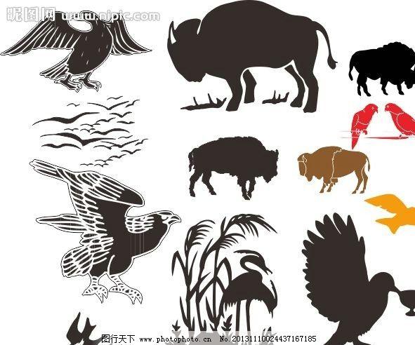 经典动物素描图 素描 动物
