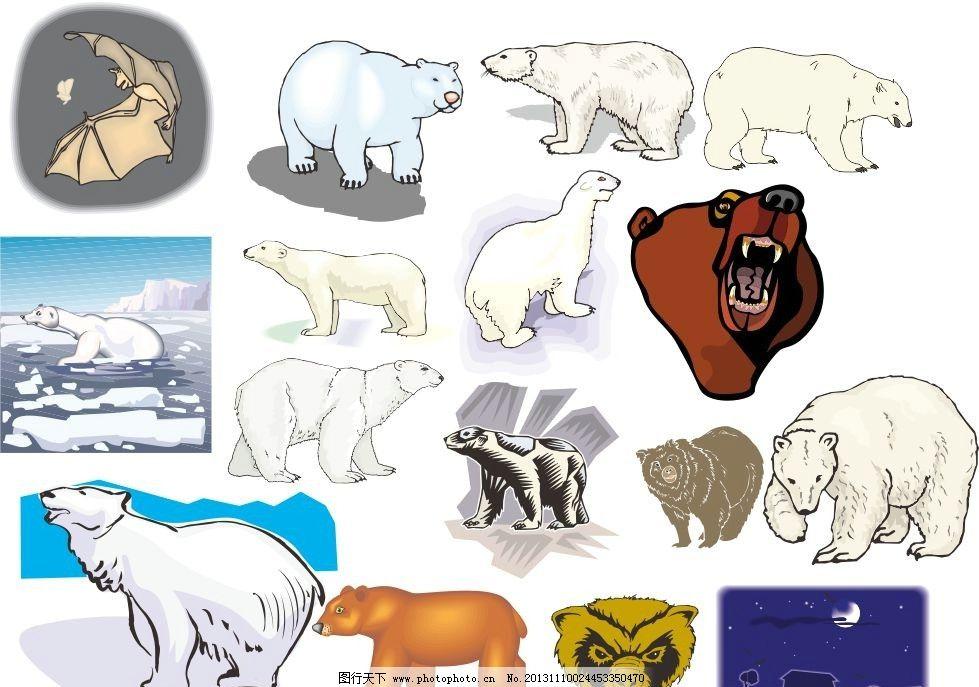 动物世界 北极熊 动物家族 素描 动物 陆地动物 生物世界 各种动物