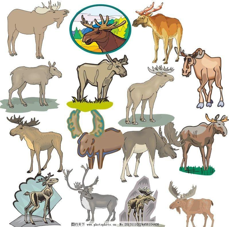 动物世界 麋鹿 四不像 鹿 动物家族 素描 动物 陆地动物 生物世界
