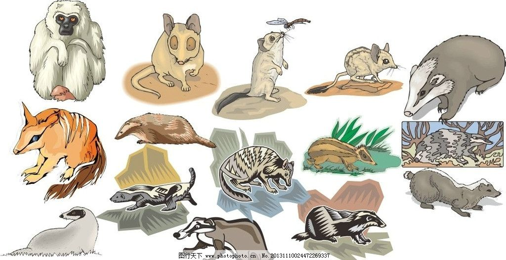 动物世界 蝙蝠 松鼠 狐狸 动物家族 素描 陆地动物 各种动物矢量素材