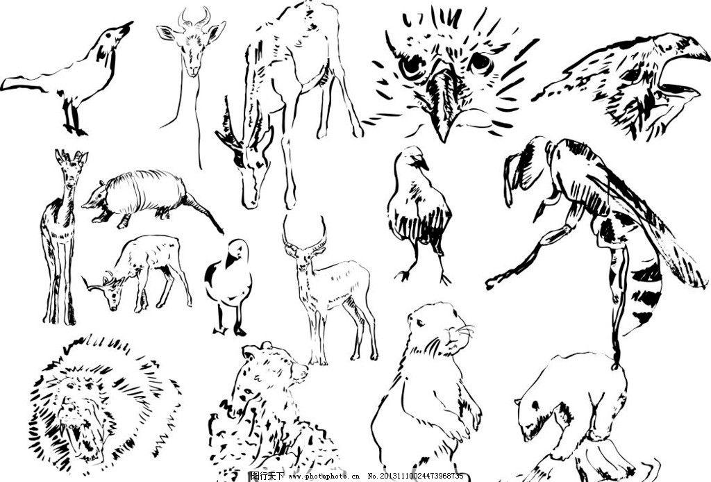 素描动物 素描 动物 陆地动物 生物世界 海洋生物 海底世界 各种动物矢量素材 各种动物模板下载 鹰 鹿 北极熊 鸟 梅花鹿 松鼠 各种动物 素描图 广告设计 矢量 CDR 线条 海洋动物 简笔画 手绘动物矢量素材 野生动物