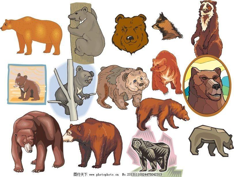 动物世界 熊 北极熊 黑熊