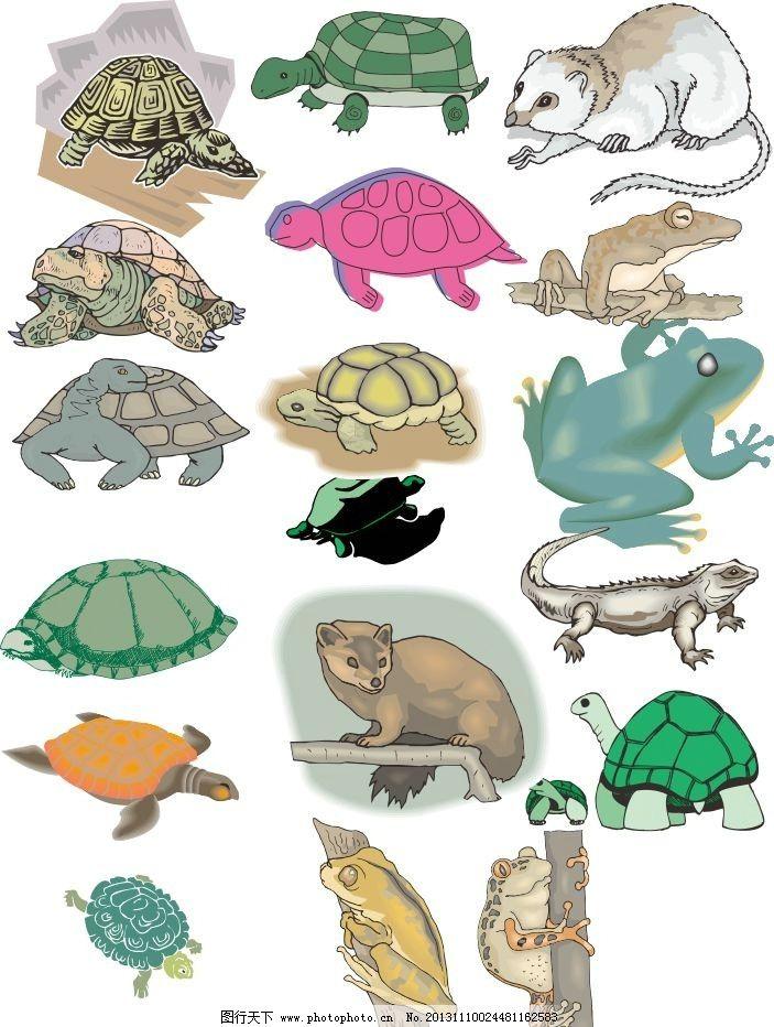 动物世界 乌龟 松鼠 青蛙 龟 海龟 素描 动物 陆地动物 生物世界 各种